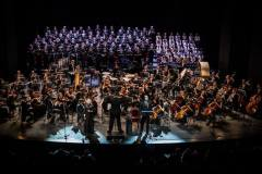 Der Solitude-Chor Stuttgart